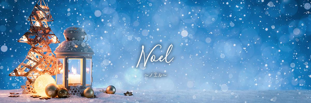 ミルメルシー ハーバリウム『Noel』